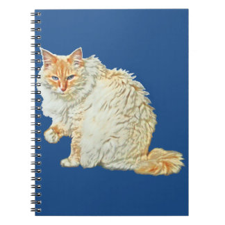 Flame point siamese cat 2 notebooks