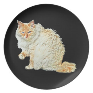 Flame point siamese cat 2 plate