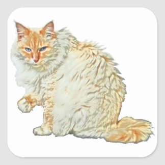 Flame point siamese cat 2 square sticker