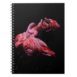 Flames in the Darkness Notebooks