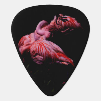 Flames in the Darkness Plectrum