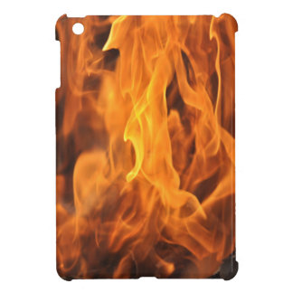 Flames - Too Hot to Handle Case For The iPad Mini