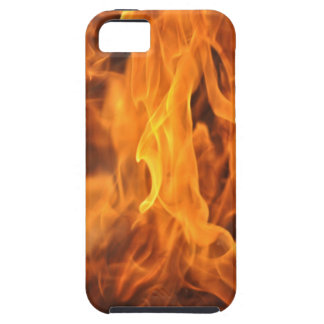 Flames - Too Hot to Handle iPhone 5 Case