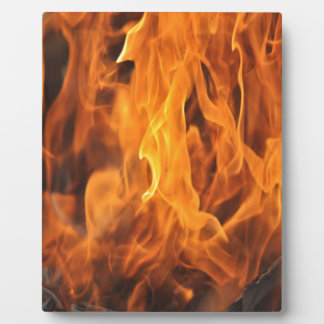 Flames - Too Hot to Handle Plaque