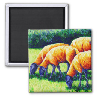 Flamin' Sheep - Sheep Magnet