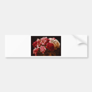 Flaming Red Peony Flower Bouquet Bumper Sticker