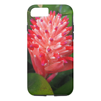 Flaming Torch Bromeliad iPhone 8/7 Case