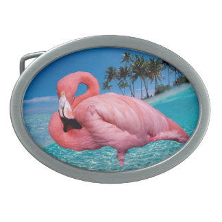 Flamingo and Palms Oval Belt Buckles
