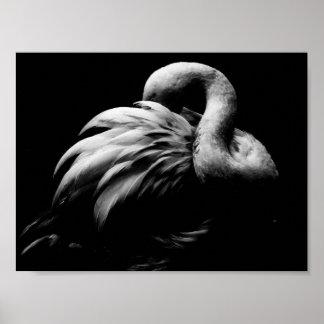 Flamingo - B&W Poster
