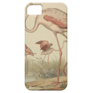 Flamingo bingo case for the iPhone 5
