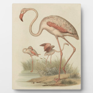 Flamingo bingo plaque