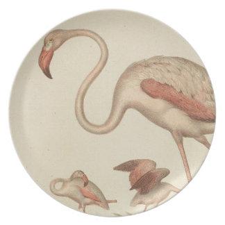 Flamingo bingo plate