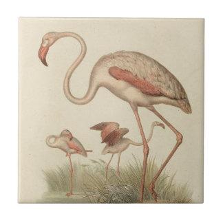 Flamingo bingo tile