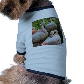Flamingo Bird Doggie Tshirt