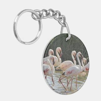 Flamingo Bird Office Home School Destiny Destiny'S Key Ring