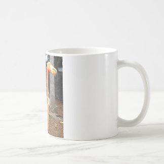 Flamingo Face Coffee Mug