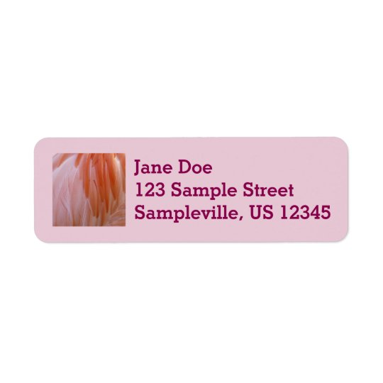 Flamingo Feathers Pink Abstract Nature Return Address Label