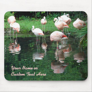Flamingo Flamboyance Mouse Pad