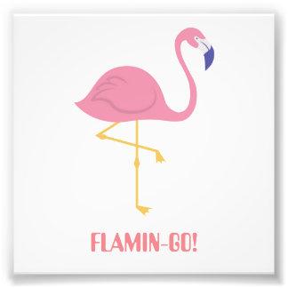 Flamingo (Flamin-Go!) Photo Print