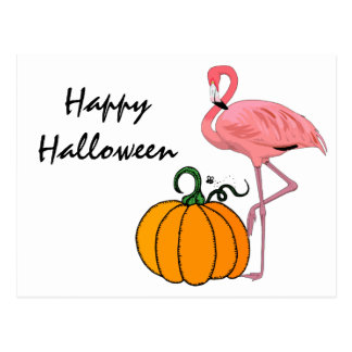 Flamingo Halloween Pumpkin Postcard