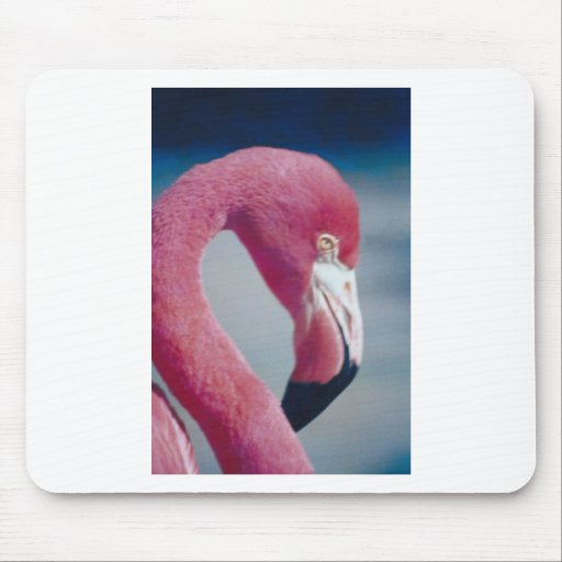 Flamingo Mouse Pads