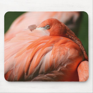 Flamingo Mousepad