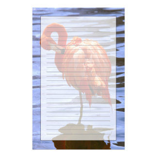 Flamingo on one leg in water stationery paper