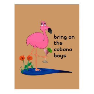 Flamingo on Vacation Post Card