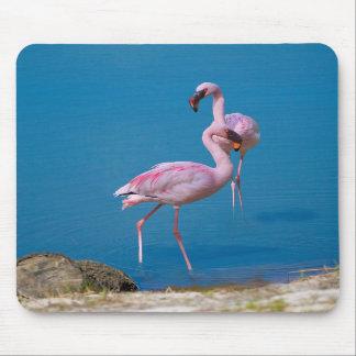 Flamingo Pair Mousepad