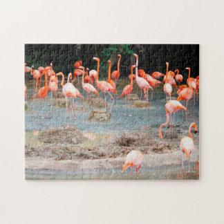 Flamingo Pond Singapore. Jigsaw Puzzle