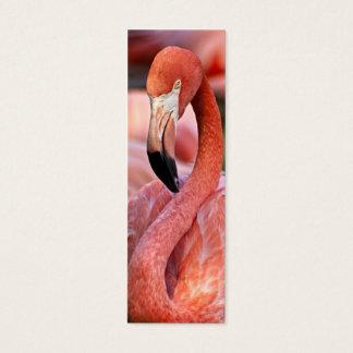 Flamingo Profile Card