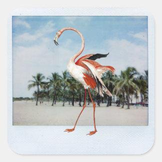 Flamingo Square Sticker