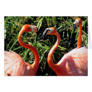 Flamingo Time to Talk - Greeting Card