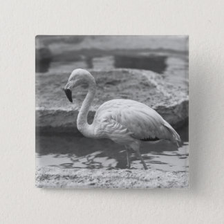 Flamingo wading in water B&W 15 Cm Square Badge