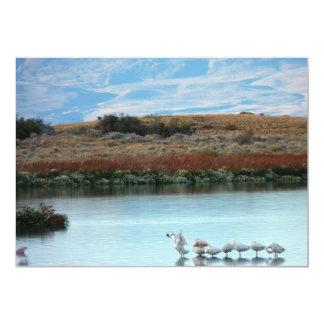 Flamingos at dusk card