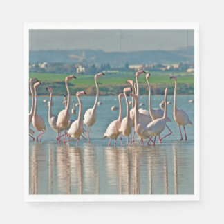 Flamingos at Larnaca salt lake-Cyprus Paper Napkins