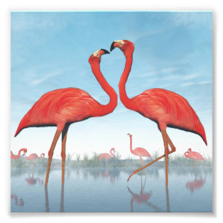 Flamingos courtship - 3D render Photo