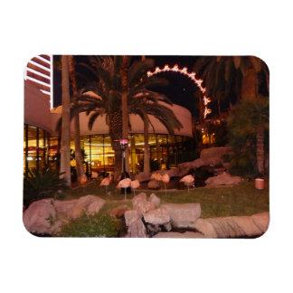 Flamingos, Las Vegas Photo Magnet