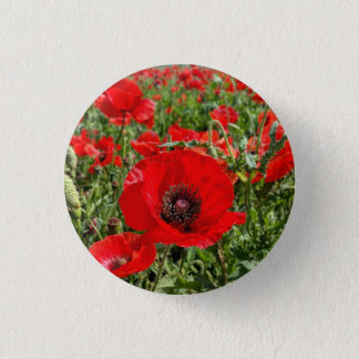Flanders Poppy Button