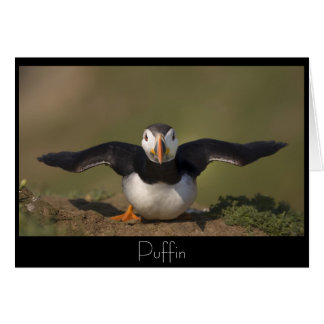 Flapping Puffin Card