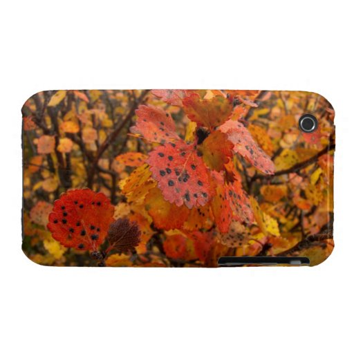Flashy Fall iPhone 3 Cover