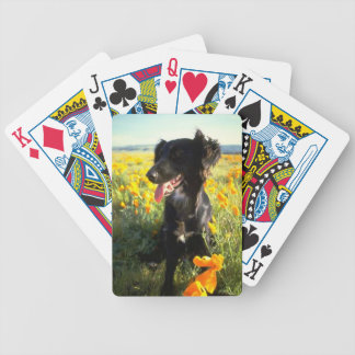 Flat Coat Retriever Dog Playing Cards