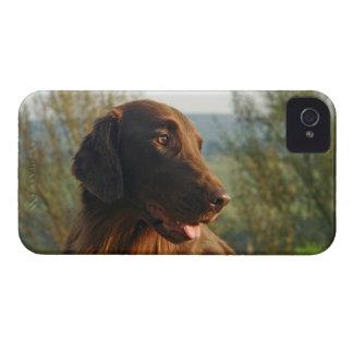 Flat Coated Retriever custom iphone 4 case mate
