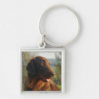 Flat Coated Retriever dog beautiful photo keychain