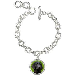Flat Coated Retriever dog, black beautiful photo