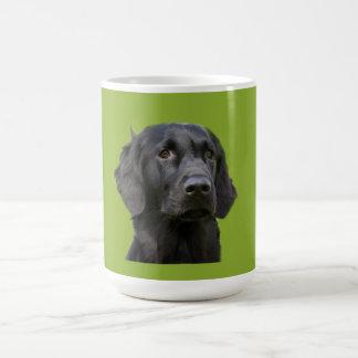 Flat Coated Retriever dog black, beautiful photo Coffee Mug
