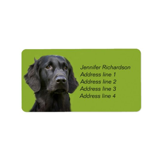 Flat Coated Retriever dog, black custom Address Label