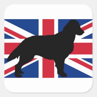 flat coated retriever silo england United_Kingdom. Square Sticker