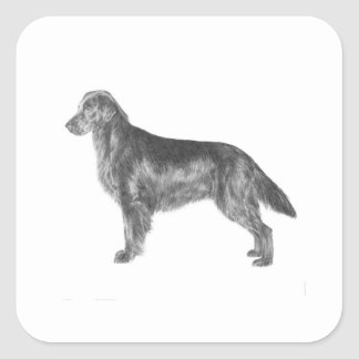 Flat Coated Retriever Square Sticker