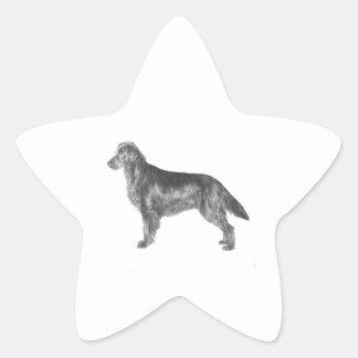Flat Coated Retriever Star Sticker